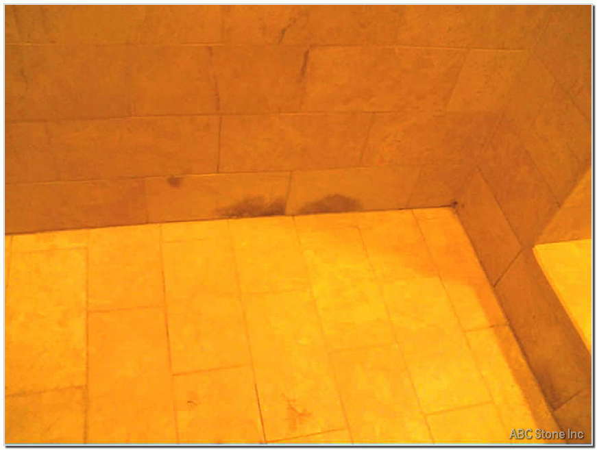 Shower Mold Removal